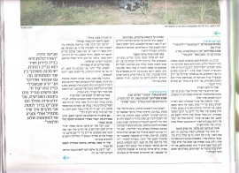 עינת ישראל היום 004